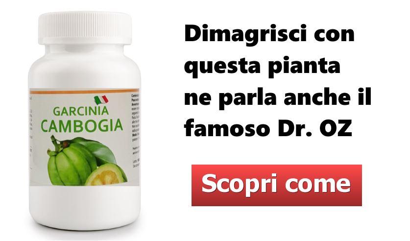 Garcinia Cambogia Call jpg - Dieta con la Carota