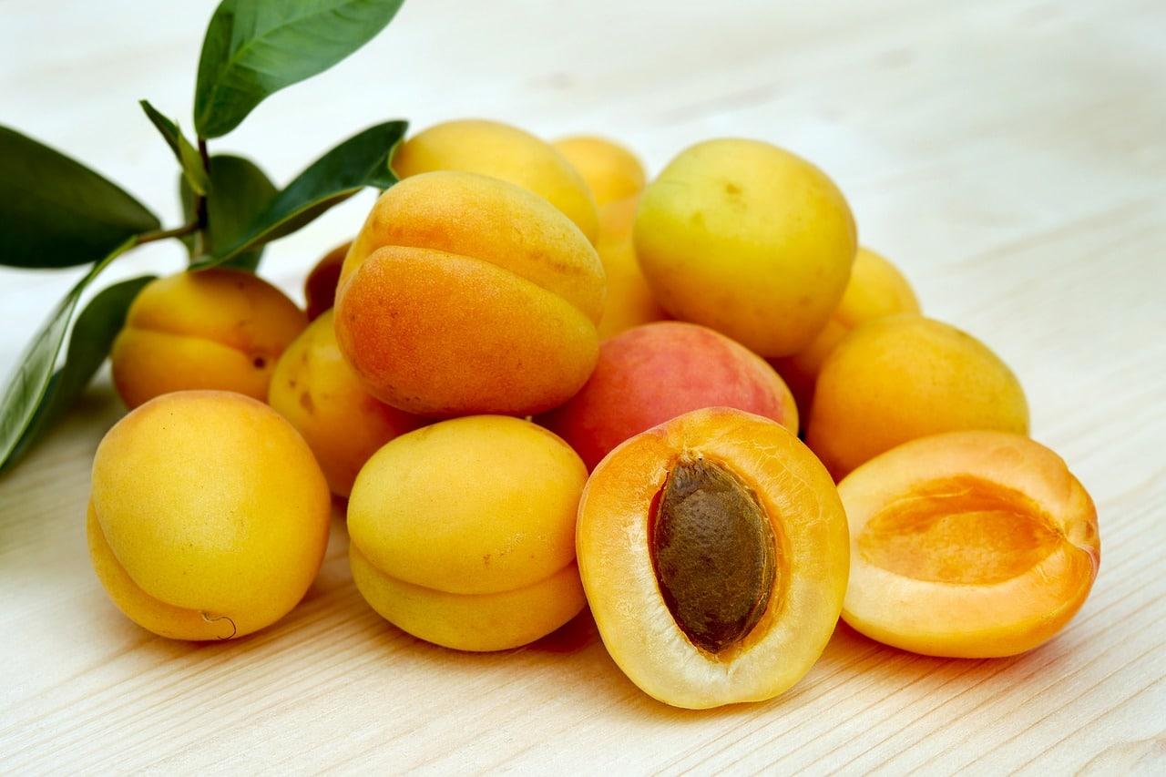 albicocca 1556225336 - Dieta con l'Albicocca