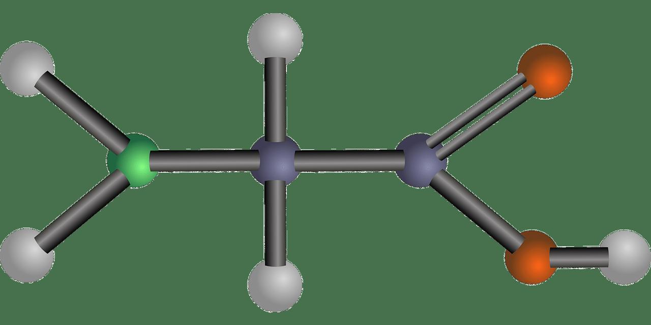 aminoacidi 1556224568 - Dieta degli aminoacidi