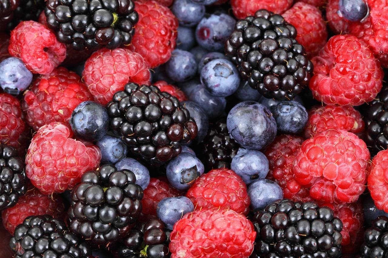 frutti di 1556225318 - Dieta con i Frutti di bosco