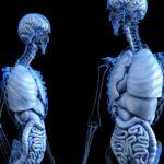 intestino 1556201448 150x150 - In salute con le tisane