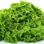 lattuga 1556225349 150x150 - Tutto sul Melograno, dai benefici agli effetti collaterali