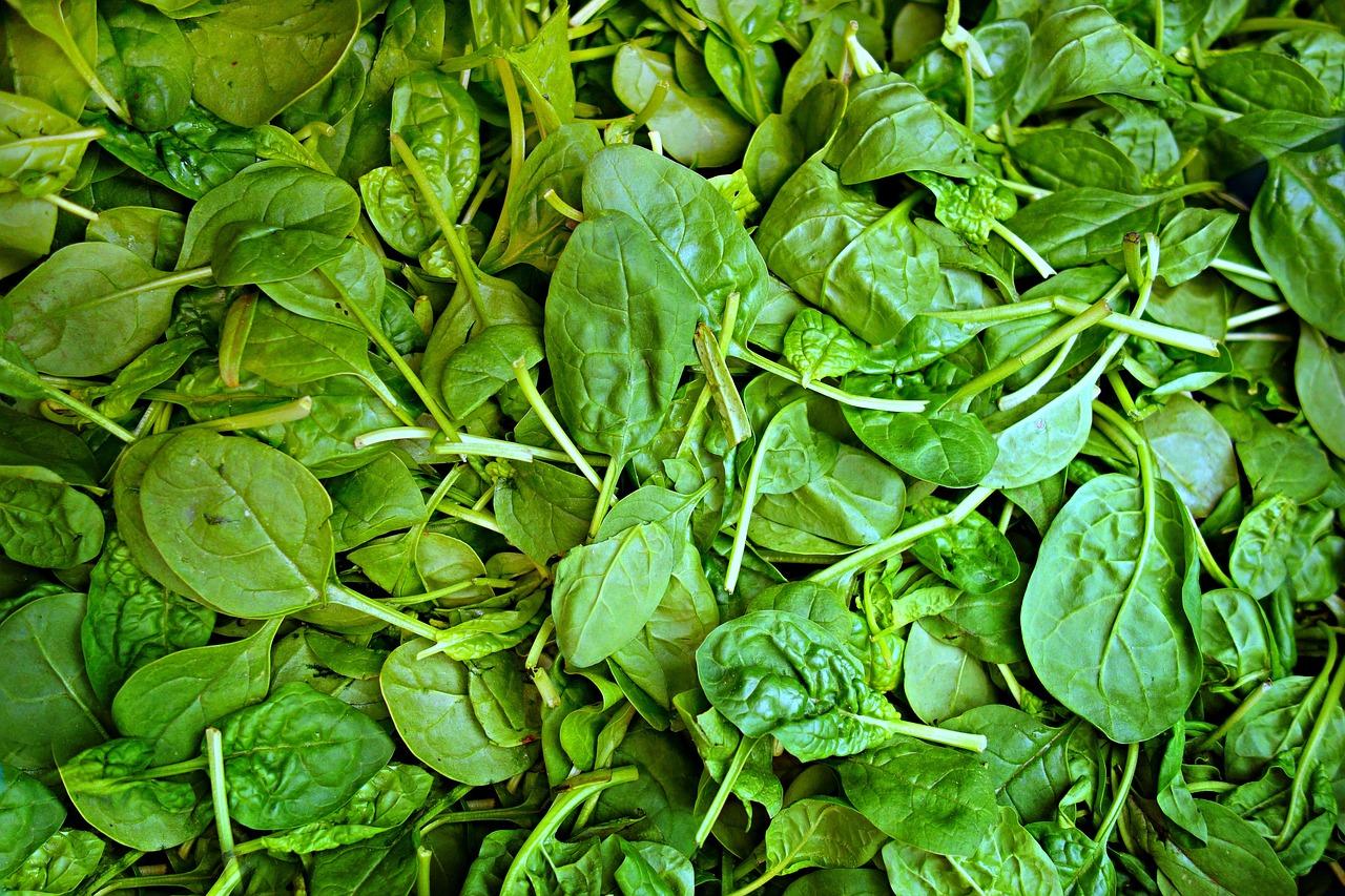 spinaci 1556225367 - Dieta con Spinaci