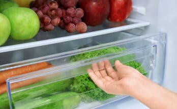 8203 frigorifero 348x215 - Conservare gli alimenti in frigorifero: consigli e suggerimenti