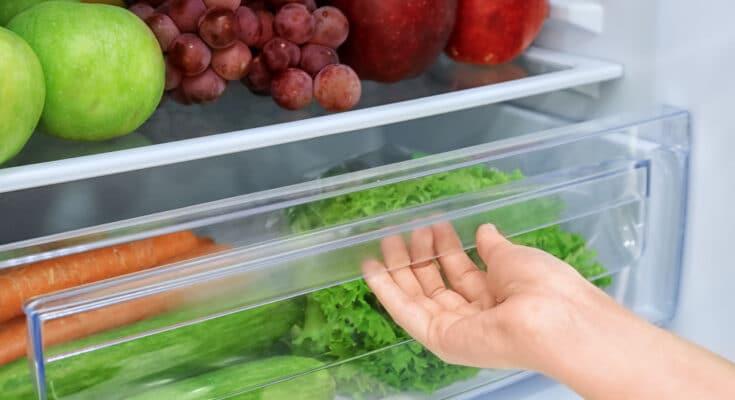 8203 frigorifero 735x400 - Conservare gli alimenti in frigorifero: consigli e suggerimenti