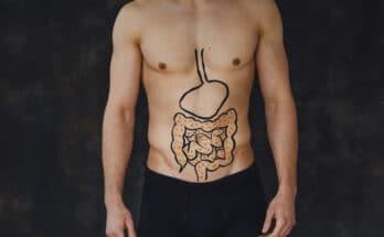 9556 microbiota batteri 348x215 - In che modo la salute umana viene condizionata dal microbiota